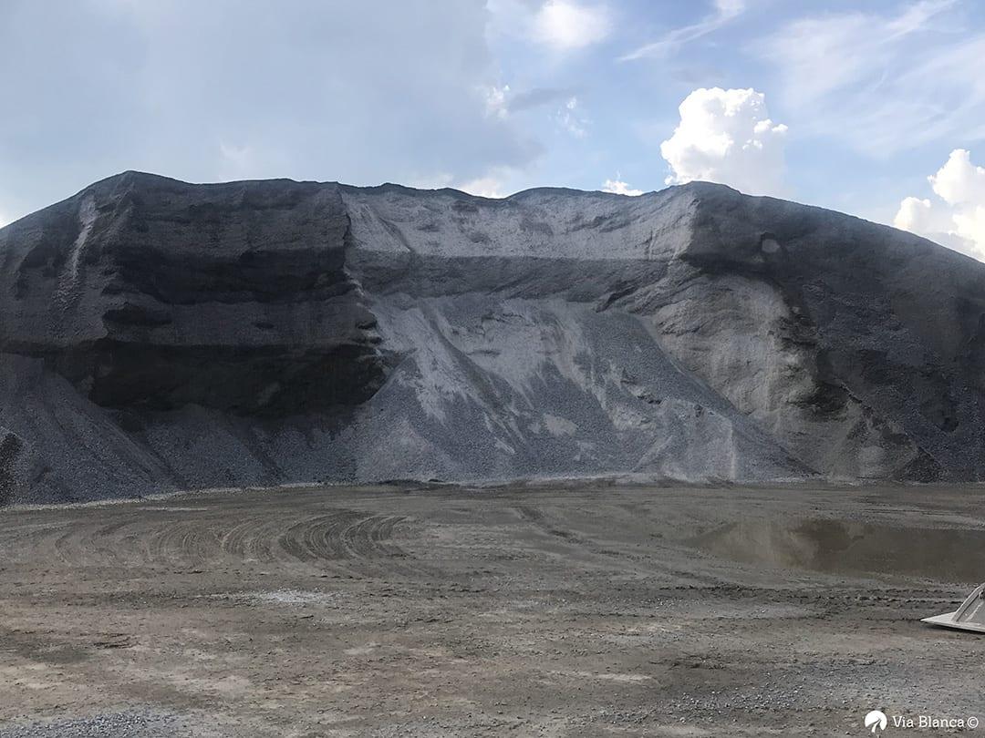 Kalliomursketta kasalla, 2017