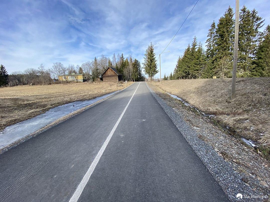 Reunaviivalla erotettu kulkumuodot, kävely ja pyöräilyväylä, Lempäälä, 2019